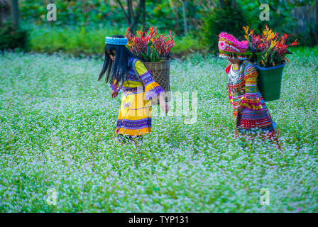 Girls from the Hmong minority in a village near Dong Van in Vietnam - Stock Photo
