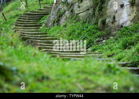 winding, ancient, mystical, stone stairways which are overgrown by green plants in a mystery ambience - Stock Photo