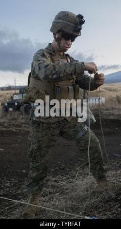 U.S. Marine Corps Cpl. Sean Barnasevitch, Headquarters Battery, 3rd Battalion, 12th Marine Regiment (3-12), 3rd Marine Division, sets up an OE-254 ground antenna on the North Fuji Training Area, Japan, Nov 22, 2016. Since 1997, Marines of 3-12 and the Japanese Ground Self-Defense Force participated in the artillery relocation training program to improve mission capabilities and readiness. - Stock Photo