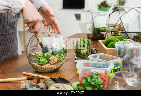 Woman transplanting plants in florarium. Mini gardening hobby concept - Stock Photo