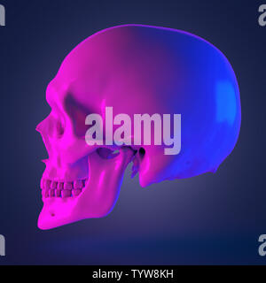 3d rendered abstract rendering of a skull - Stock Photo