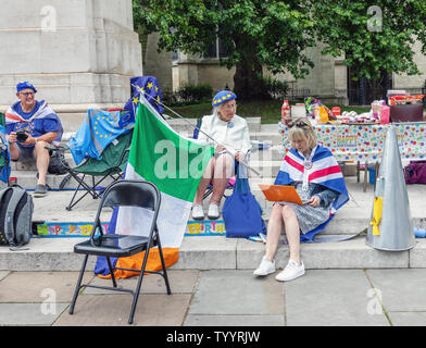 London / UK - June 26th 2019 - Pro-EU anti-Brexit protesters at a demonstration opposite Parliament in Westminster - Stock Photo
