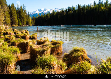 Kanas lake, Xinjiang - Stock Photo