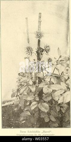 Archive image from page 173 of Die Gartenwelt (1897) - Stock Photo