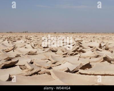 danakil dry salt dessert etopia - Stock Photo