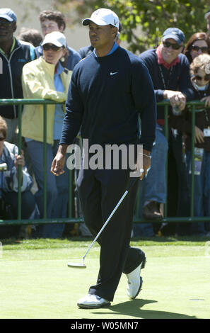 Tiger Woods is seen on the putting green during a practice round prior to the 2010 U.S. Open at the Pebble Beach Golf Links in Pebble Beach, California, June 16, 2010.  UPI/Kevin Dietsch - Stock Photo