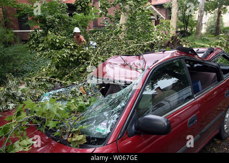 Lance Underwood tries to trim a tree that has fallen onto a car in St. Louis on July 21, 2006. The St. Louis area is still digging out from storm damage from July 19, that knocked out electrical service to over 500 thousand people.  (UPI Photo/Bill Greenblatt) - Stock Photo