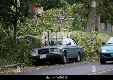 A fallen tree lies across a car in St. Louis on July 21, 2006. The St. Louis area is still digging out from storm damage from July 19, that knocked out electrical service to over 500 thousand people, prompting a state of emergency because of the amount of elderly people that did not have electricity.   (UPI Photo/Bill Greenblatt) - Stock Photo