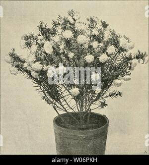 Archive image from page 451 of Die Gartenwelt (1897) - Stock Photo