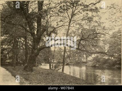Archive image from page 530 of Die Gartenwelt (1897) - Stock Photo