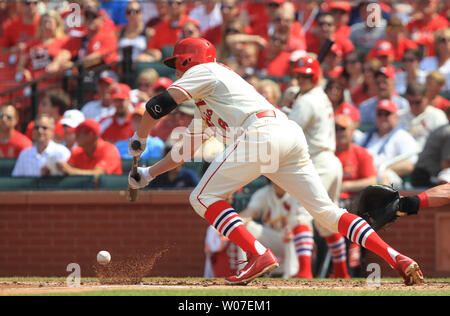 St. Louis Cardinals Peter Bourjos lays down a bunt in the second inning against the Philadelphia Phillies at Busch Stadium in St. Louis on June 21, 2014.  St. Louis won the game 4-1. UPI/Bill Greenblatt - Stock Photo