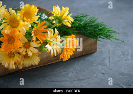 Healthy calendula or marigold flowers. Medicinal herbs in wooden crate. - Stock Photo