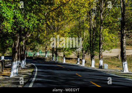 Autumn in western Sichuan, the world of light and shadow of Xindu Bridge