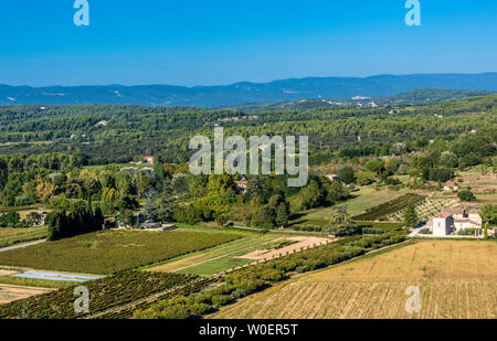 France, Lubéron, Vaucluse, the Comtat Venaissin plain and the Mont Ventoux mountain seen from Ménerbes (Most Beautiful Village in France) - Stock Photo