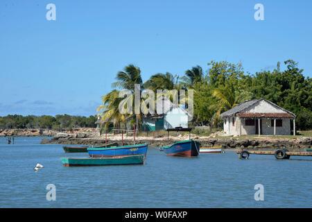 Cuba, Gibara, the small harbor of San Antonio in front of Gibara, blue sea and coconut trees - Stock Photo