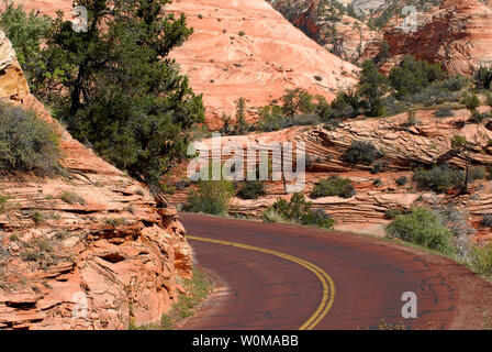 A beautiful scene of a road winding through a canyon surrounded by red cliffs, and green shrubs and trees, in Zion National Park, Utah, USA - Stock Photo
