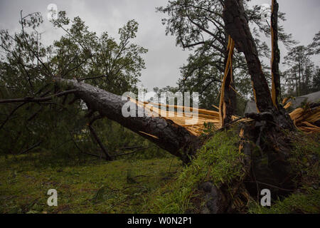 A tree collapsed on the Paradise Point Houses during Hurricane Florence on Marine Corps Base Camp Lejeune, N.C., on September 15, 2018. Hurricane Florence impacted MCB Camp Lejeune and Marine Corps Air Station New River with periods of strong winds, heavy rains, flooding of urban and low lying areas, flash floods and coastal storm surges. Photo by Lance Cpl. Isaiah Gomez/U.S. Marine Corps/UPI - Stock Photo