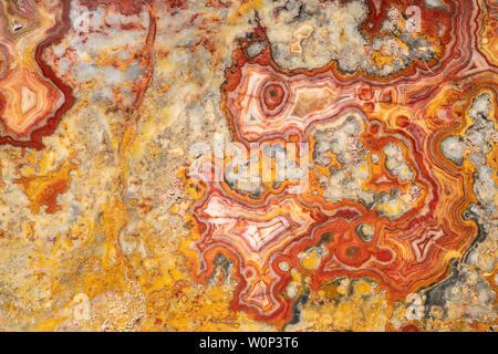 Australian crazy lace agate. Origin: Marillana, Australia. Courtesy of ZRS Fossils, By Dominique Braud/Dembinsky Photo Assoc