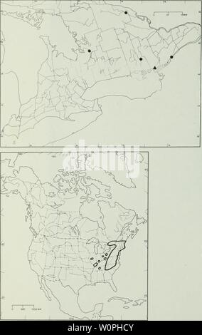 Archive image from page 65 of Description and analysis of the - Stock Photo