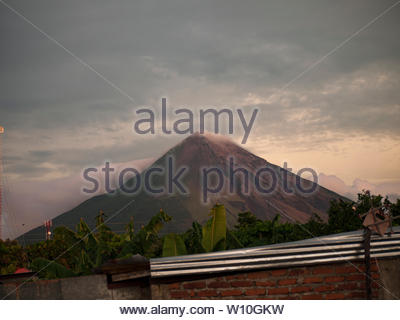 Volcan Concepcion with Baltimore orioles perched on wires in the foreground. - Stock Photo