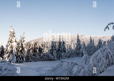 winter bellow Lysa hora hill in Moravskoslezske Beskydy mountains in Czech republic with snow covered hiking trail, frozen trees, hill on the backgrou - Stock Photo
