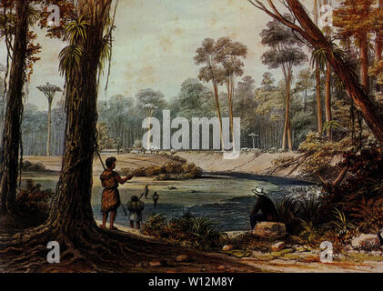 coloured lithograph of a Maori Village in a kauri forest near the Bay of Islands in New Zealand by Augustus Earl, 1827 - Stock Photo