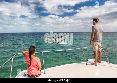 Whale watching boat tour tourists people on ship looking at humpback tail breaching ocean in tropical destination, summer travel vacation. Couple on deck of catamaran. - Stock Photo