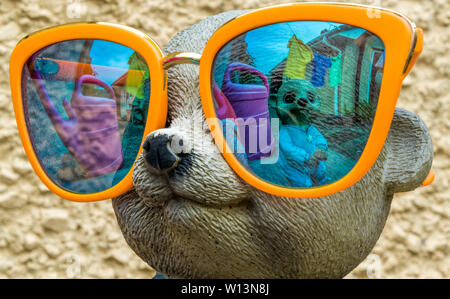 Crazy Meerkats in Mirrored glasses Photograph taken in my backyard. - Stock Photo
