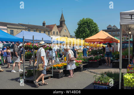 Bury St Edmunds market, view in summer of people shopping in the Saturday market in the centre of Bury St Edmunds, Suffolk, East Anglia, UK. - Stock Photo