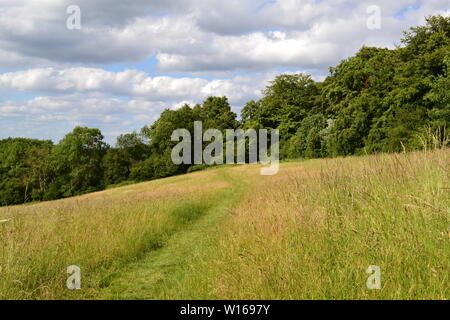Meadows and footpaths between Downe and Biggin Hill airport where Charles Darwin observed in19th century. Now valuable natural landscape - Stock Photo