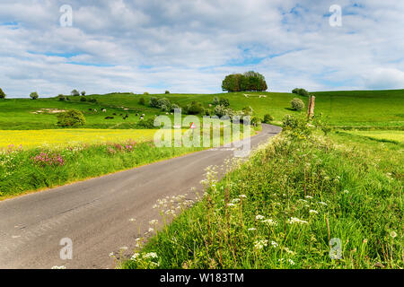 Tradational English countryside with a winding lane leading up a hill with a whire horse carved on it it at Hackpen Hill in the Wiltshire countryside - Stock Photo