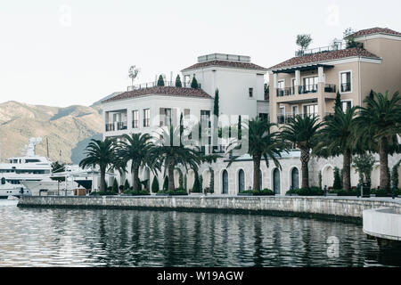 Beautiful view of the embankment or the street with houses and many palm trees in the coastal city of Tivat in Montenegro. - Stock Photo