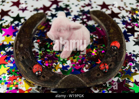 Horseshoe and Ladybuck as Lucky Charm - Stock Photo