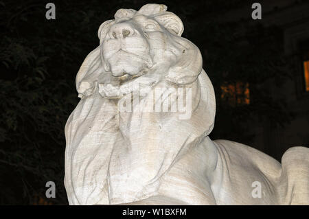 Patience and Fortitude lion at entrance to the New York City Public Library in Midtown Manhattan. - Stock Photo