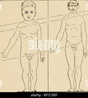 Archive image from page 482 of The development of the human Stock Photo