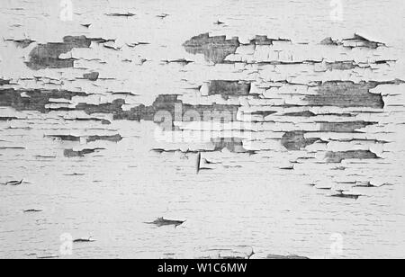 Old plank wooden wall background. The texture of old wood. Weathered piece of wood. Image includes a effect the black and white tones. - Stock Photo