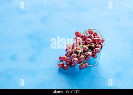 Red grape with water drops, closeup, isolated on blue background.fresh red grapes. Harvest time. Summer fresh berries, healthy food,wine production - Stock Photo