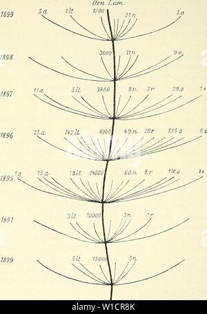 Archive image from page 727 of Die mutationstheorie Versuche und beobachtungen - Stock Photo