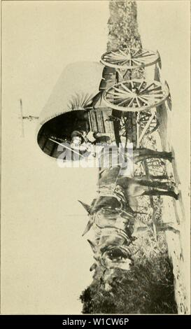 Archive image from page 76 of The desert and the rose - Stock Photo