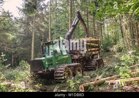 Wales, UK. A John Deere 1710D Eco III Forwarder carrying felled logs down off a hillside to an access road - Stock Photo