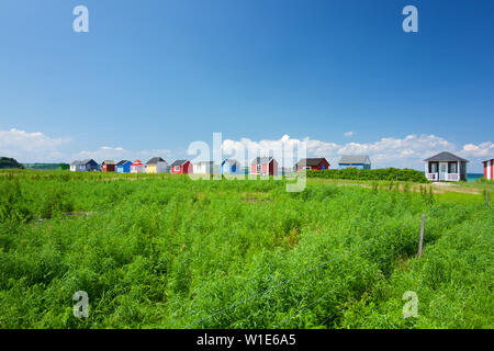 Beach huts and landscape, Aeroskobing, Aero, Denmark - Stock Photo