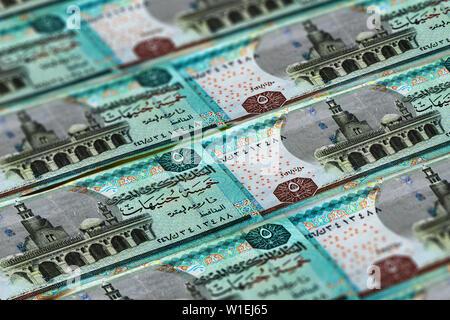 Money of Egypt. Egyptian pound background. Five pounds - Stock Photo