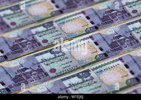 Money of Egypt. Egyptian pound background. Twenty pounds - Stock Photo