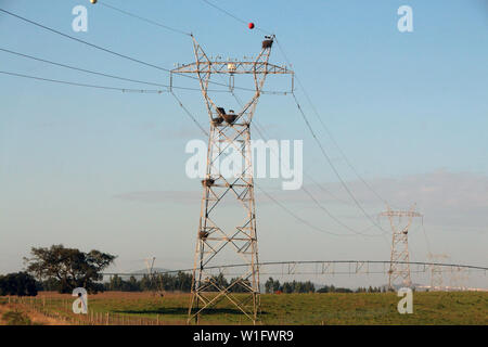Close view of big electricity towers on a field with white stork nests. - Stock Photo