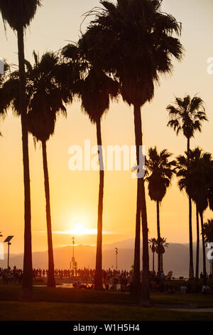 Sunset in the skate park in Venice Beach, Los Angeles, California, USA - Stock Photo