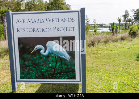 Florida, FL, South, Collier County, Naples, Ave Maria, planned community, college town, Roman Catholic university, religion, lifestyle, Tom Monaghan, - Stock Photo