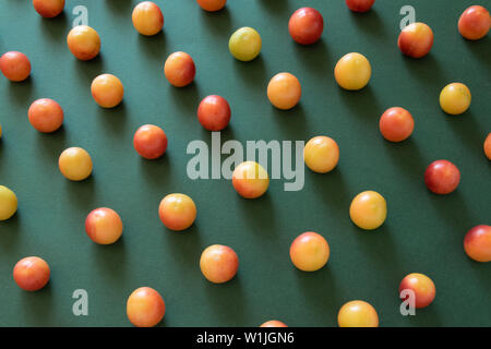 Abstract food pattern. Raw plum fruits on deep green background. - Stock Photo
