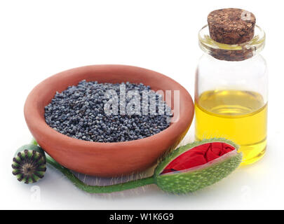 Poppy flower seeds and pods with extract in bottle over white background - Stock Photo