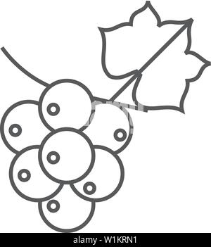 Grape icon in thin outline style. Fruit berry dessert sweet organic - Stock Photo