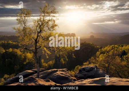 View from the Carolafelsen in spring with a spectacular sunset and the first green leaves on the trees, Elbe Sandstone Mountains, Saxon Switzerland Na - Stock Photo